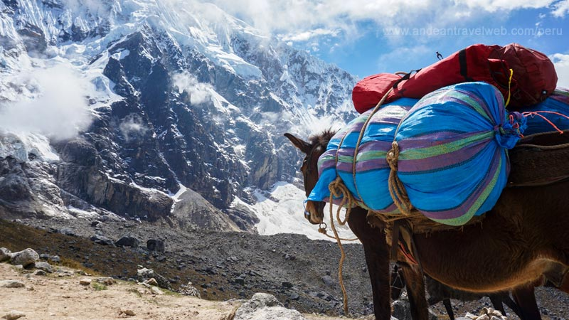 7-day Salkantay to Machu Picchu trek